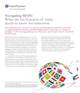 navigating beps cover