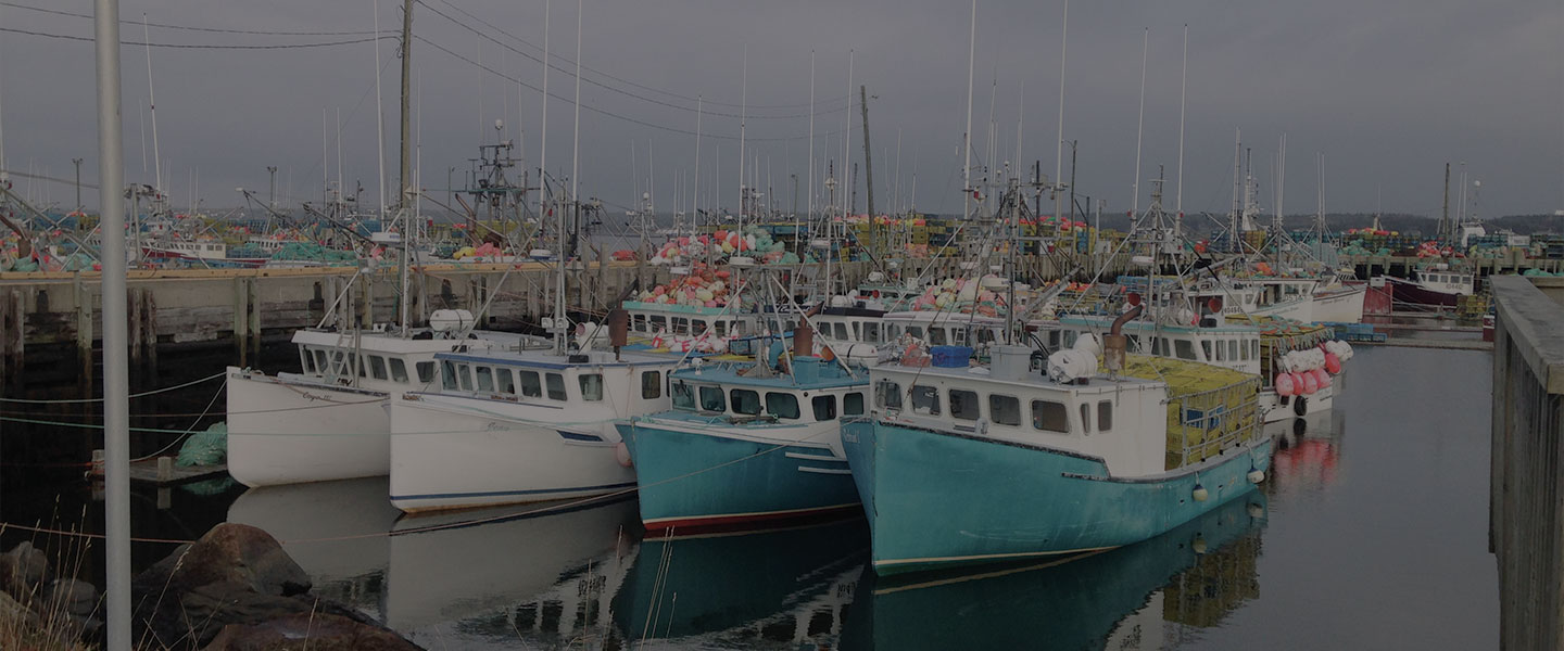 Finding the way forward: Guiding the Nova Scotia fishing industry through COVID-19